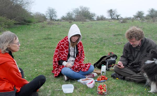 mini130511-picknick